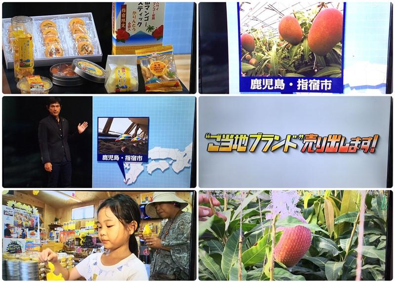 テレビ東京『ガイアの夜明け』で紹介されました!